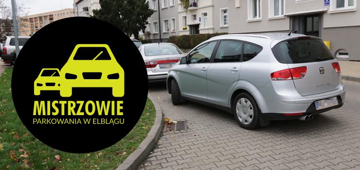 Mistrzowie parkowania w Elblągu (część 34)