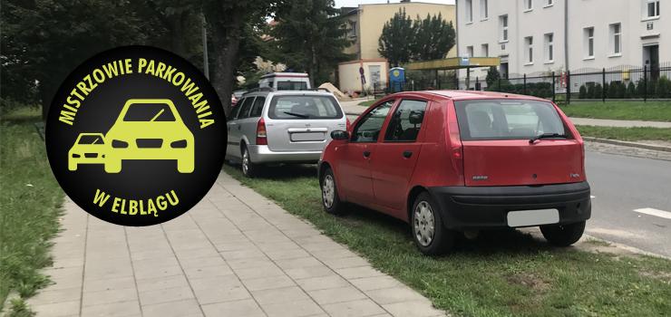 Mistrzowie parkowania w Elblągu (część 64)