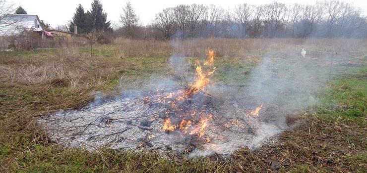 Spalanie odpadów przez elblążan