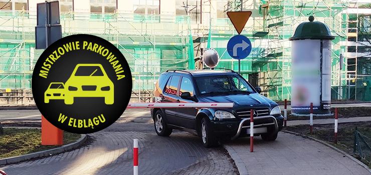 Mistrzowie parkowania w Elblągu (część 96)