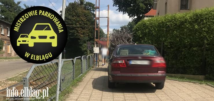 Mistrzowie parkowania w Elblągu (część 118)