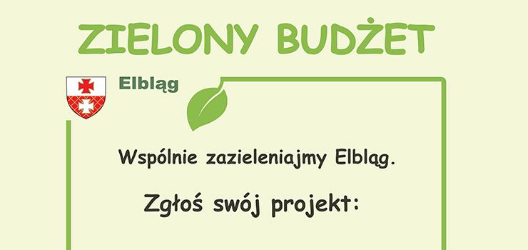 Zielony Budżet Elbląga 2021 – rozpoczynamy głosowanie