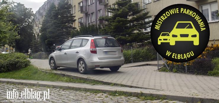Mistrzowie parkowania w Elblągu (część 119)