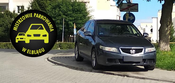 Mistrzowie parkowania w Elblągu (część 122)