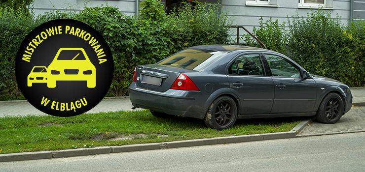 Mistrzowie parkowania w Elblągu (część 123)