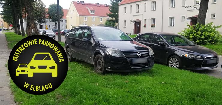 Mistrzowie parkowania w Elblągu (część 124)